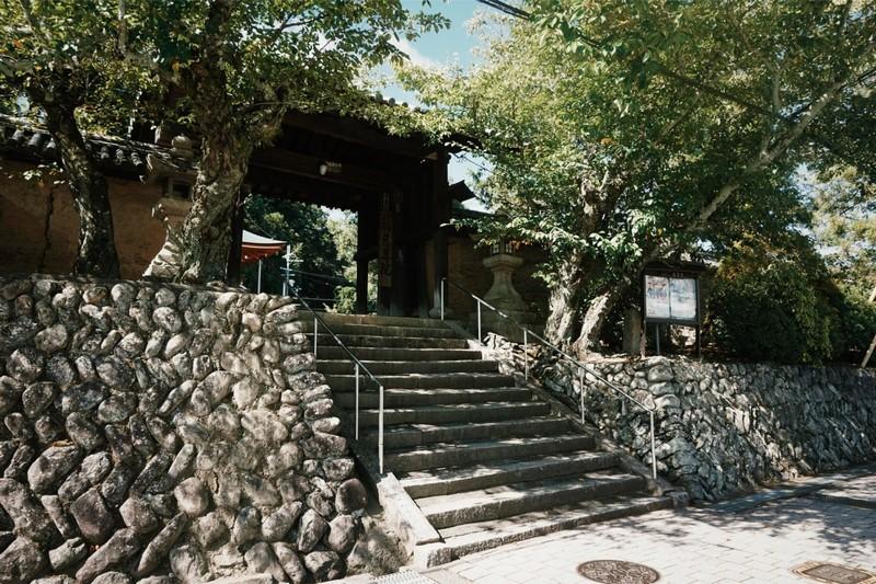 Wanderlust Tips Magazine | Jison-in the temple of breast in Japan