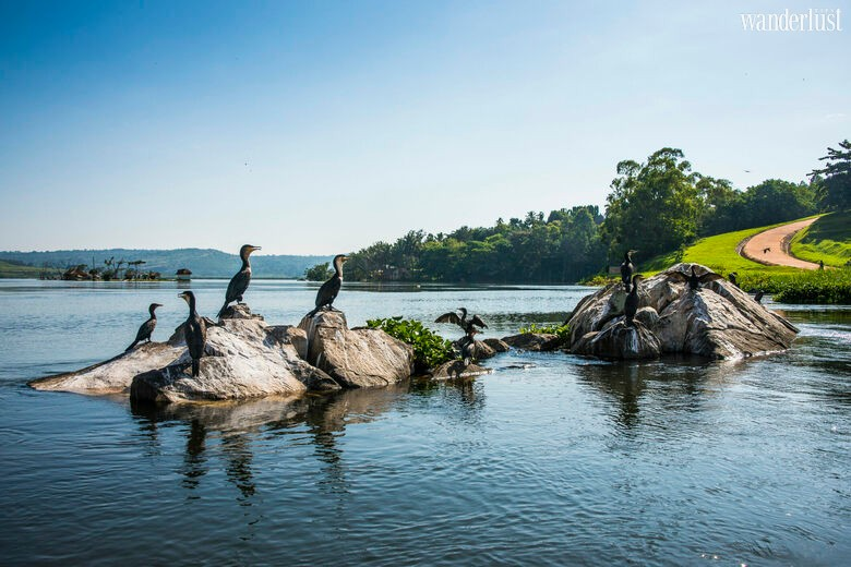 Wanderlust Tips Magazine | Uganda: A romantic land and source of the Nile river