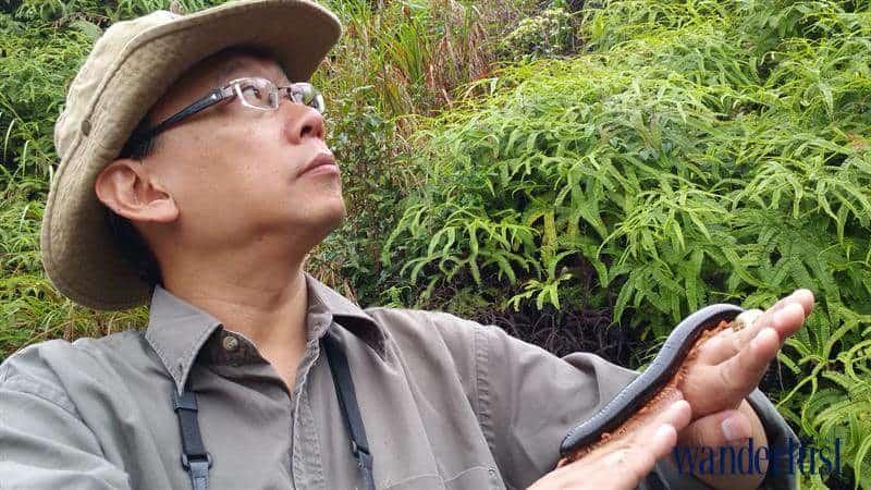 Wanderlust Tips Magazine | Gary Leong - Principal of Cat Tien Jungle Lodge