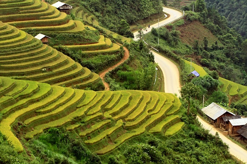 Wanderlust Tips Magazine | Different views of foreigners when visiting Vietnam