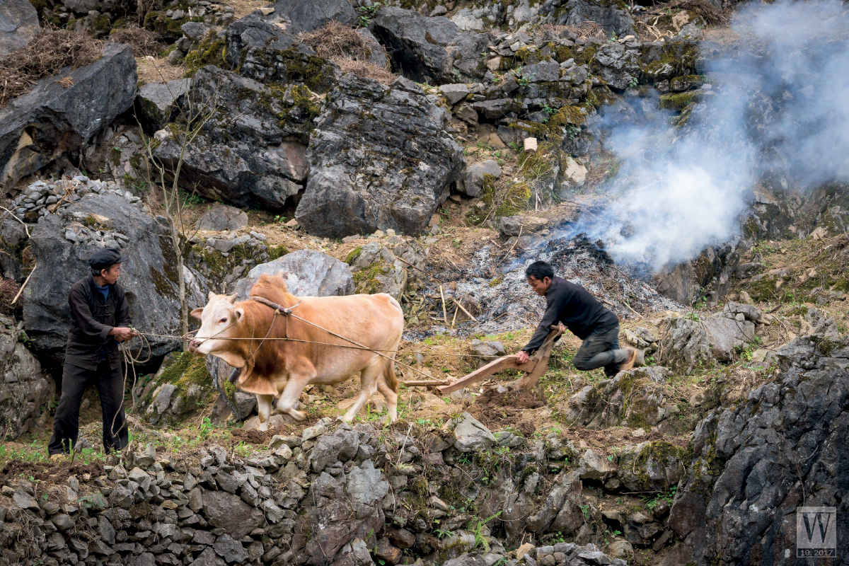 Wanderlust Tips Magazine   Ha Giang and the story of the H'mong living in the rocky mountains