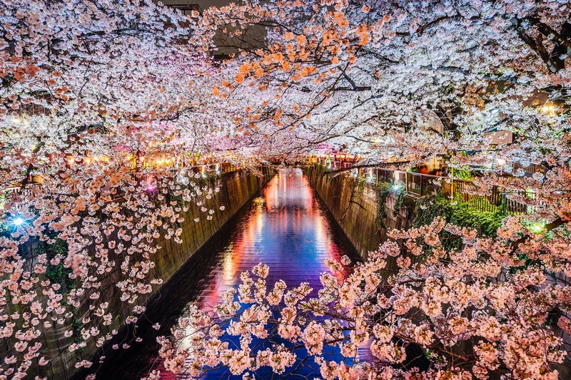 Wanderlust Tips Magazine | Significance of different monikers for Japan