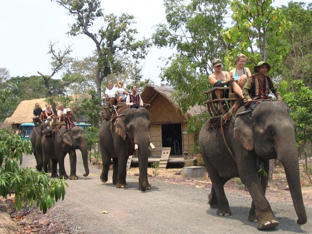 Wanderlust Tips Magazine | 8 must-see places in Dak Lak in the morning
