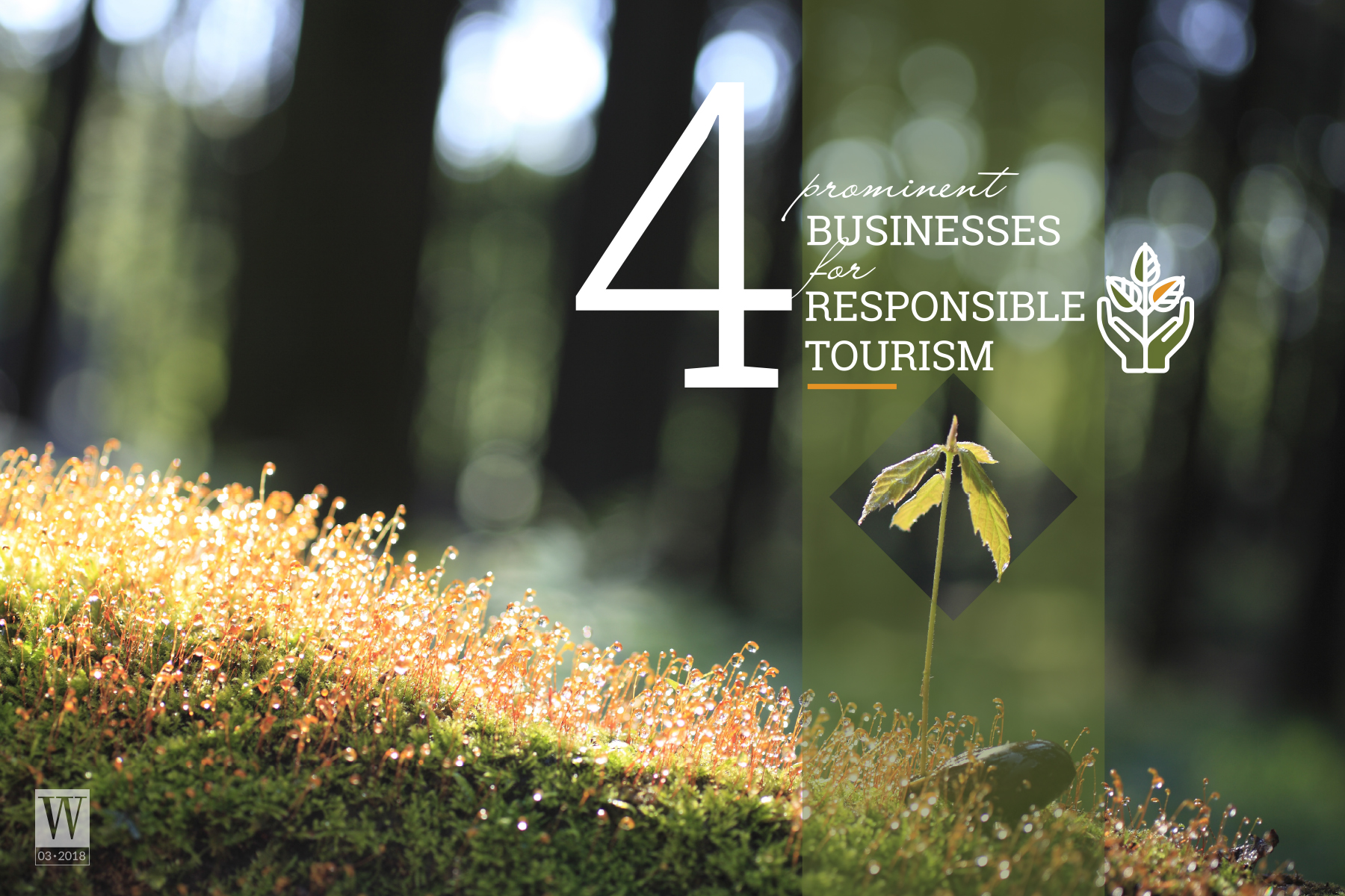 Wanderlust Tips Magazine | 4 prominent businesses for responsible tourism