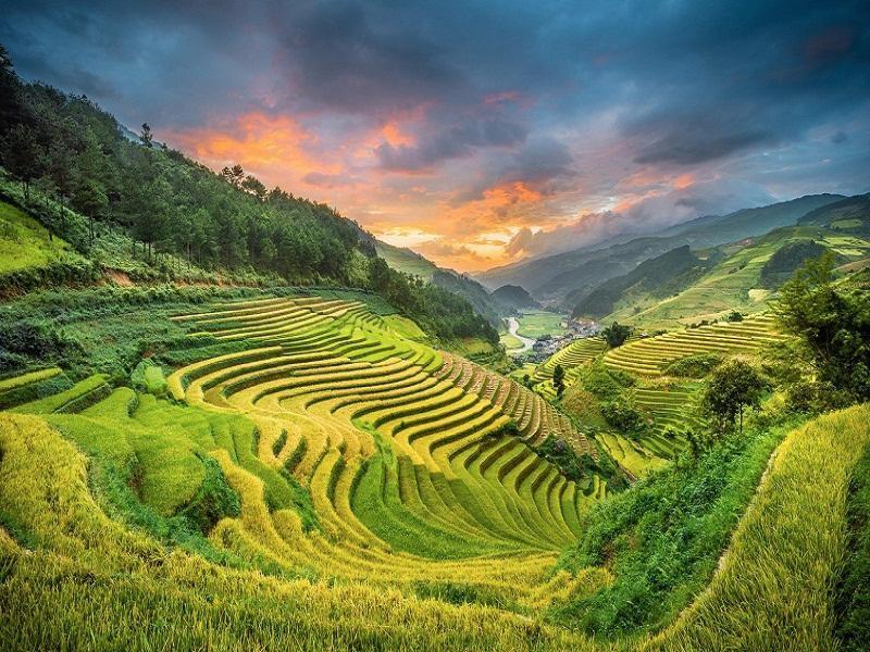 Wanderlust Tips | Sapa autumn gold