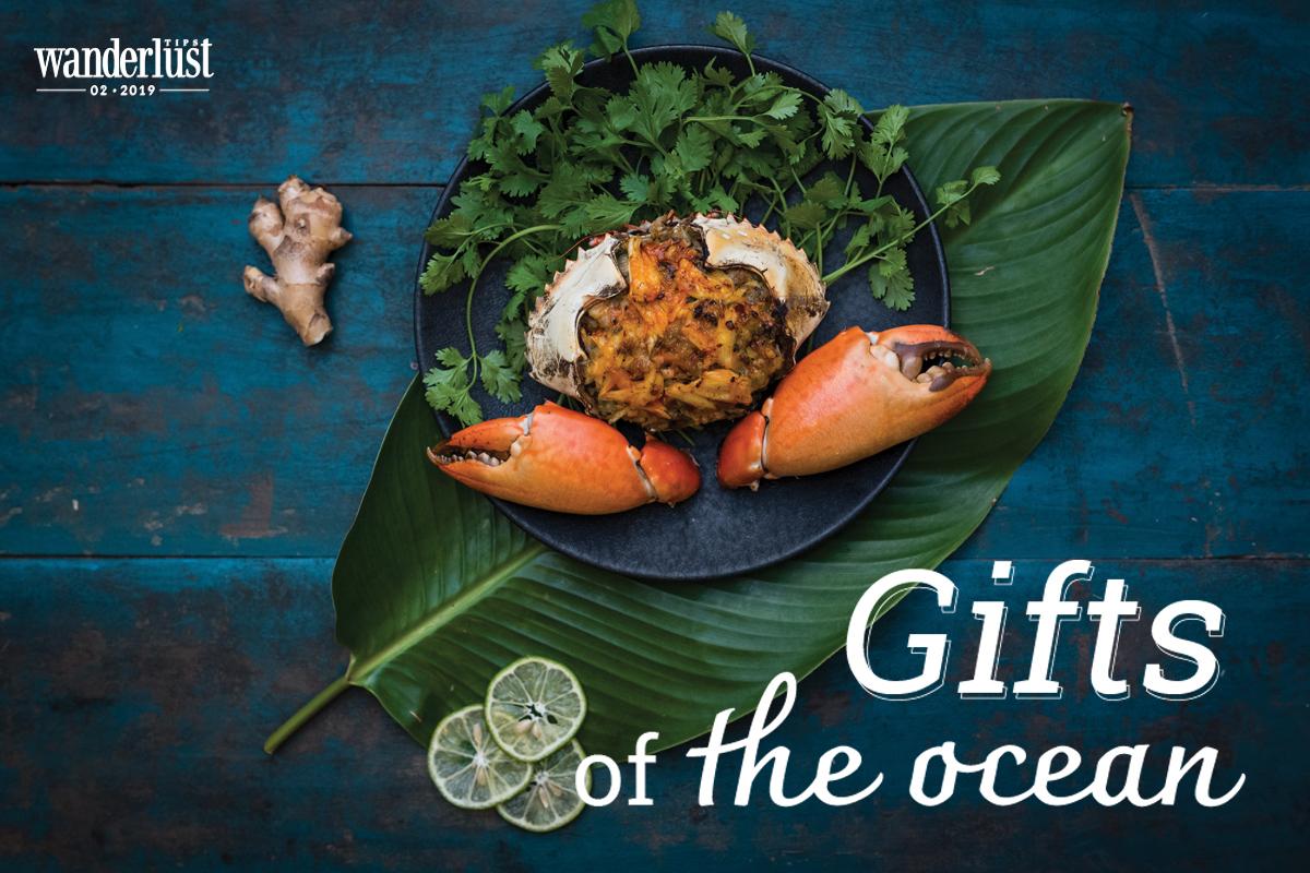 Wanderlust Tips Magazine | Gift of the ocean