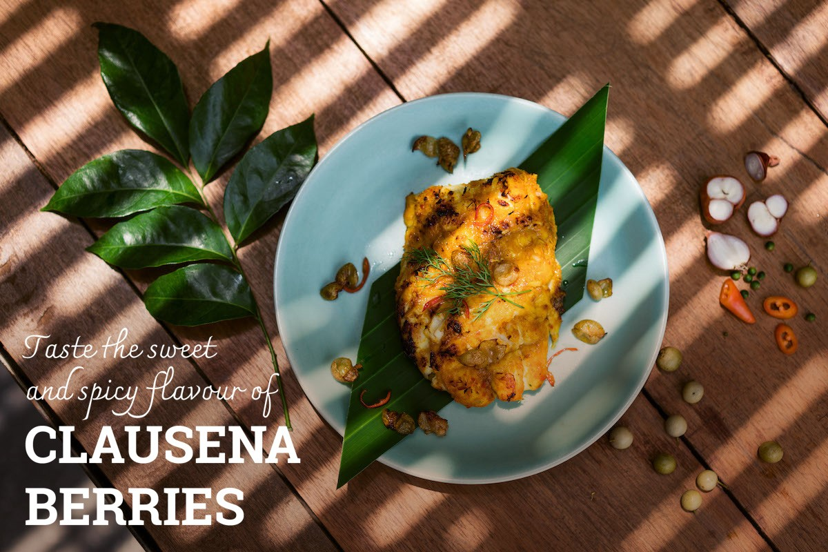 Wanderlust Tips Magazine | Taste the sweet and spicy flavour of clausena berries