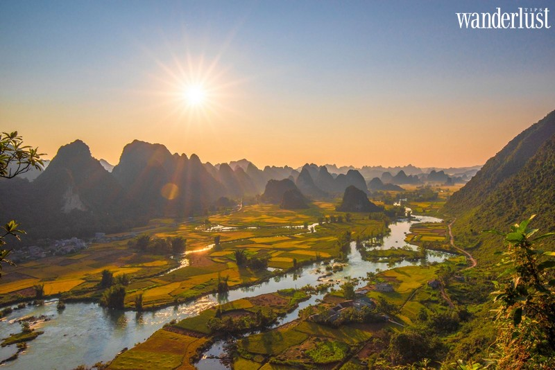 Wanderlust Tips | The alluring beauty of Quay Son River during the ripe rice season