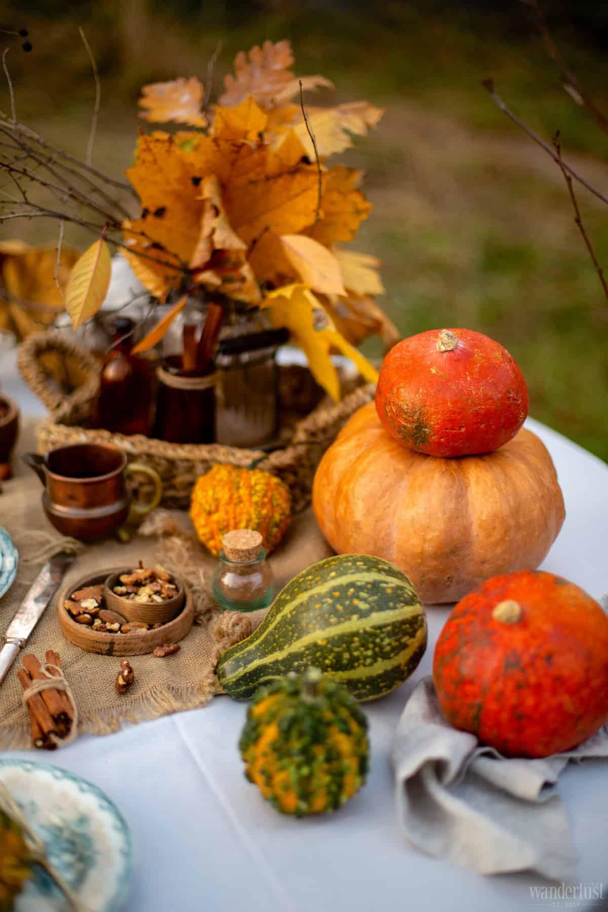 Wanderlust Tips | Thanksgiving: Marking the start of the festive season