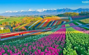 Wanderlust Tips Magazine   Things to see and do in Hokkaido, Japan