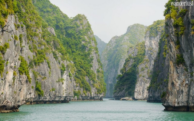 Wanderlust Tips Magazine   Lan Ha Bay: A rich treasure trove of nature