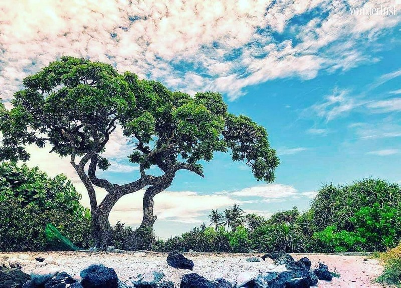 Wanderlust Tips Magazine | Ly Son Island: Discover the heavenly beauty