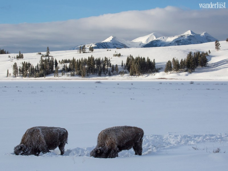 Wanderlust Tips Travel Magazine | The best US national parks to visit in winter