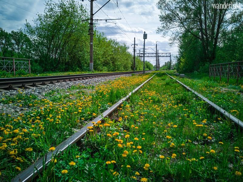 Wanderlust Tips Travel Magazine | The rhythmic clickety-clack of a rail journey
