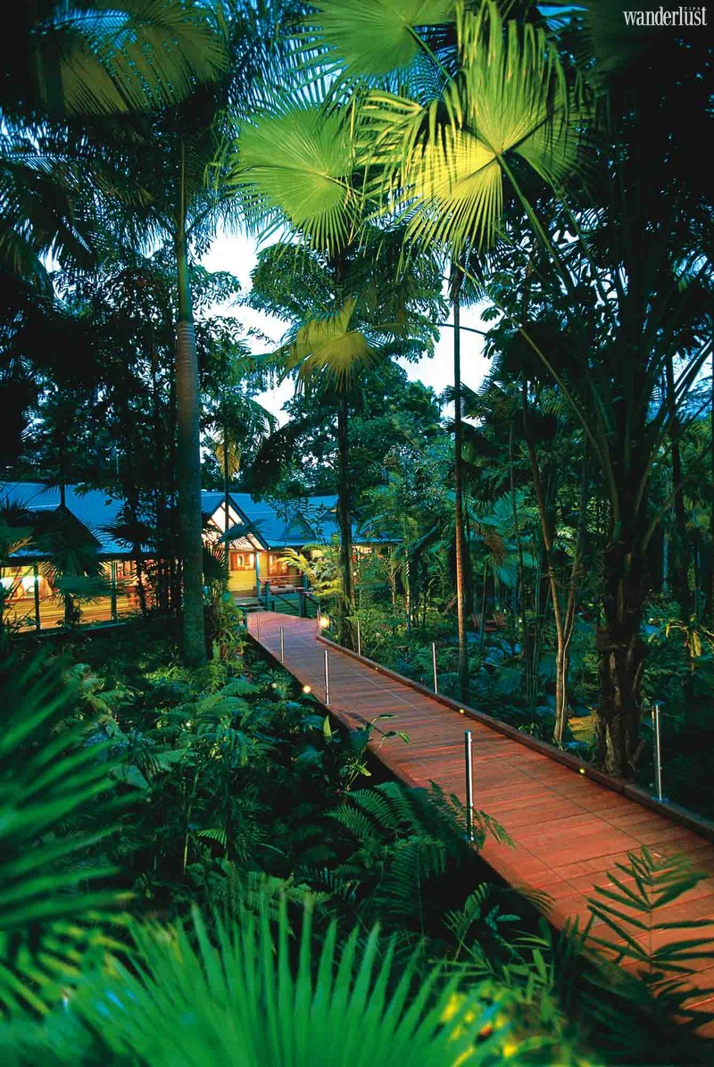 Wanderlust Tips Travel Magazine | Reconnect with nature at 7 magical forest resorts