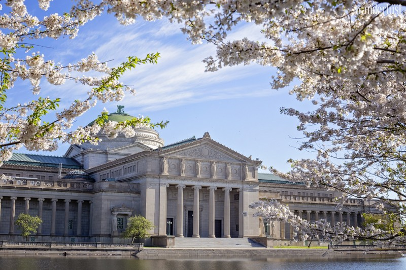 Wanderlust Tips Magazine | 7 museums every traveller should visit in Chicago, Illinois