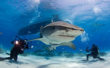 Wanderlust Tips Magazine | 7 incredible adventures around the world