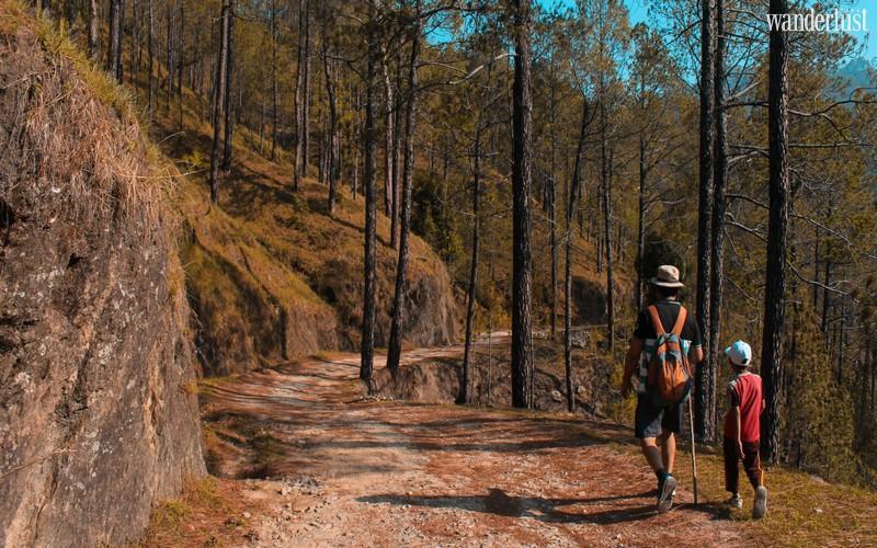 Wanderlust Tips Magazine | How to enjoy safe hiking with kids
