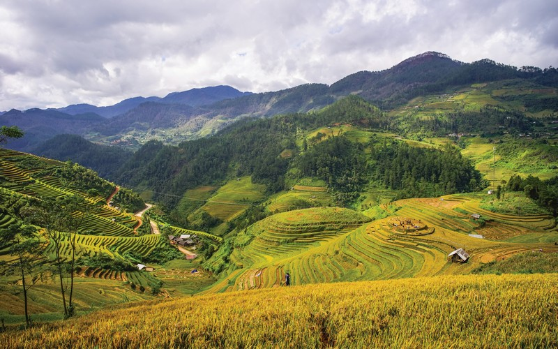 Wanderlust Tips Magazine | Moments in Vietnam