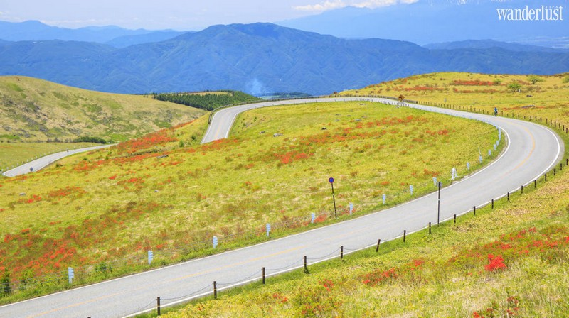 Wanderlust Tips Magazine   The most scenic road trips that will stoke your wanderlust
