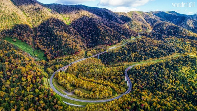 Wanderlust Tips Magazine   The most scenic road trips in Japan that will stoke your wanderlust
