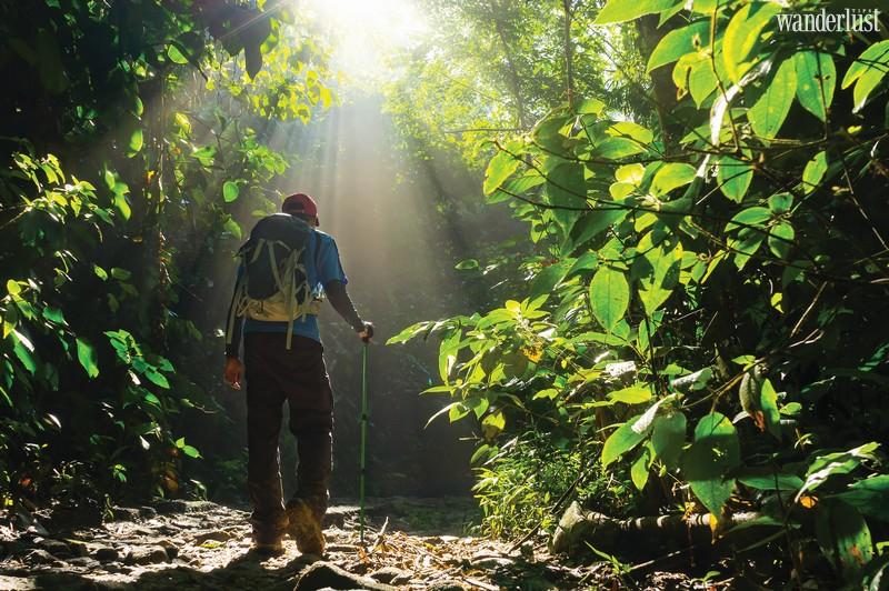 Wanderlust Tips Magazine | Wellness tourism on trend
