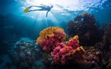 Wanderlust Tips Magazine | Best 5 activities on the water in Florida, USA
