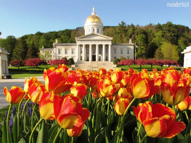Wanderlust Tips Magazine | Montpelier, Vermont: A paradise for maple syrup lovers